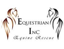 Logo_equestrian